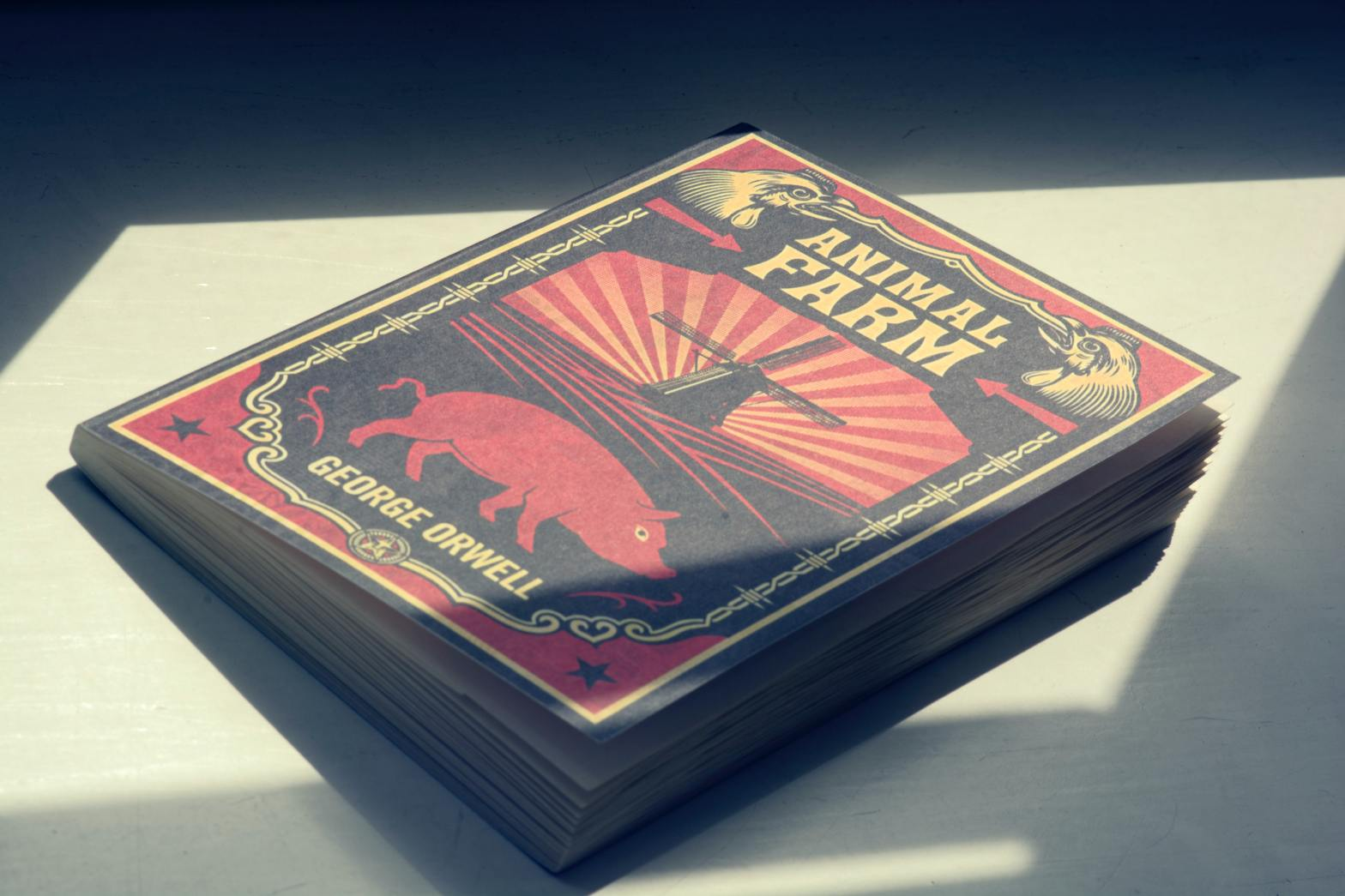 Copy of Animal Farm by George Orwell on a white surface, under sun rays